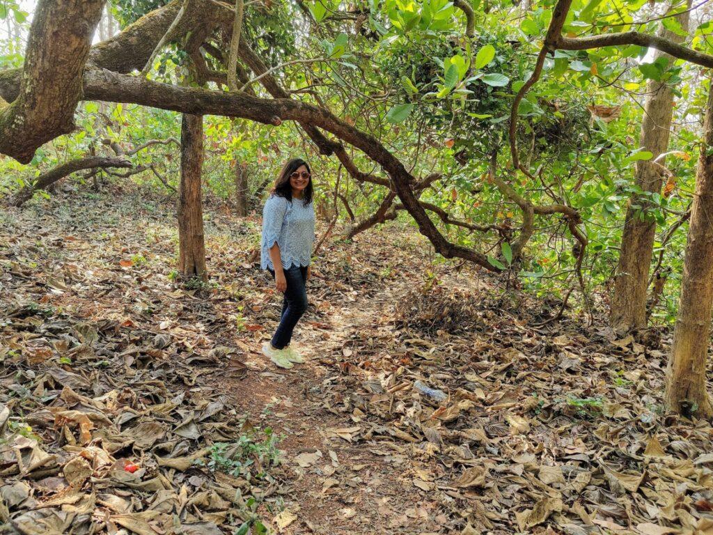 nature trail, chorao island